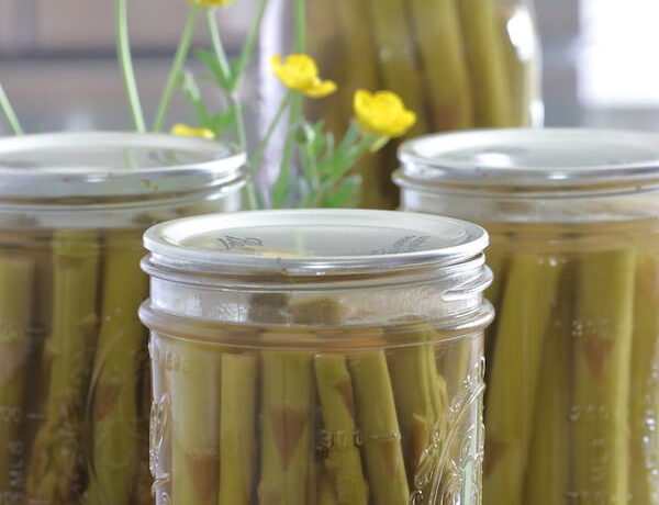 1 quart and 3 pint jars of canned pickled asparagus with a small arrangement of buttercup flowers
