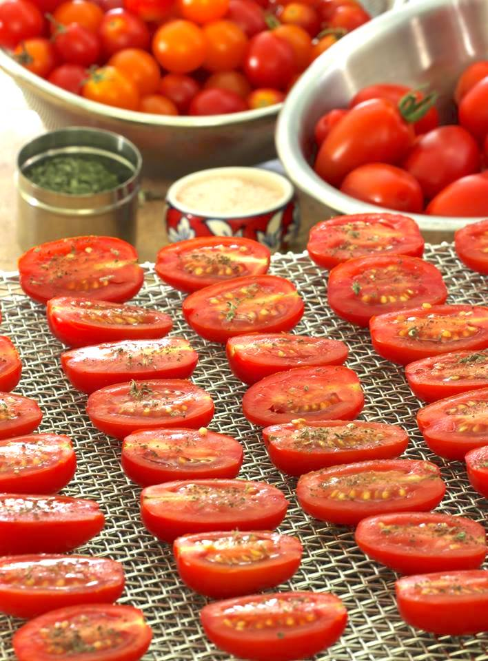 Grape tomatoes cut in half and arranged single layer on a dehydrator tray in the foreground; bowls of tomatoes in the rear