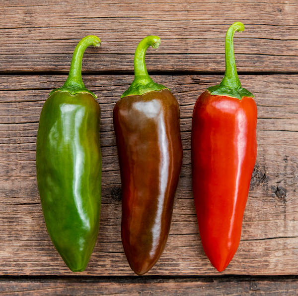 Three Jalapeños; one green, one maroon, and one bright red