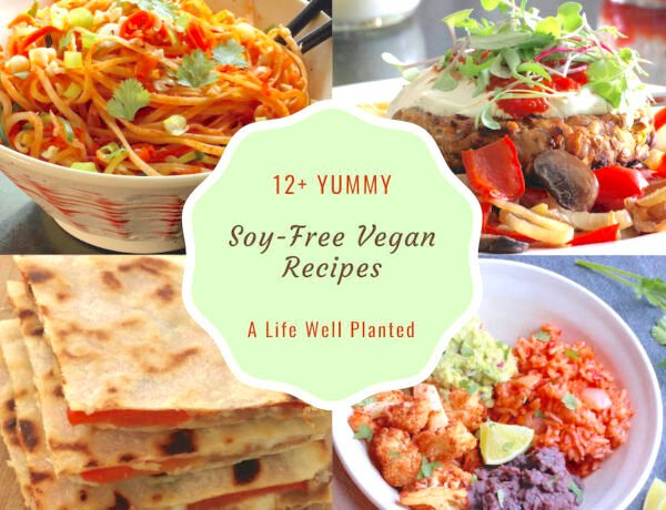 Soy-Free Recipe roundup cover highlighting 4 recipes